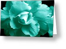 Teal Green Begonia Floral Greeting Card by Jennie Marie Schell
