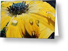Tears Of The Sun Greeting Card by Maritza Tynes