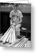 Ted Williams Greeting Card by Gianfranco Weiss