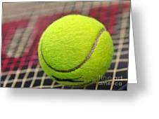 Tennis Anyone... Greeting Card by Kaye Menner