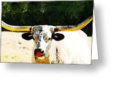 Texas Longhorn - Bull Cow Greeting Card by Sharon Cummings