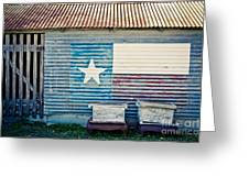 Texas Love Greeting Card by Will Cardoso