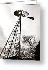 Texas Windmill Greeting Card by Marilyn Hunt