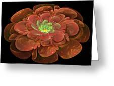 Textured Bloom Greeting Card by Sandy Keeton
