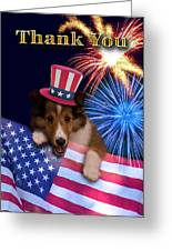 Thank You Sheltie Greeting Card by Jeanette K