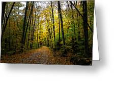 The Back Roads of Autumn Greeting Card by David Patterson
