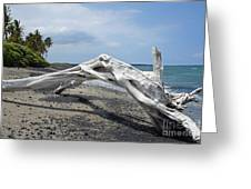 The Bali House View Greeting Card by Bob Hislop