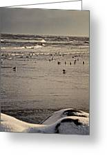 The Beach Is Ours Greeting Card by Odd Jeppesen
