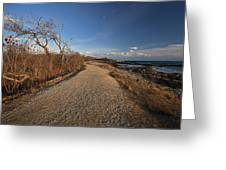 The Beaten Path Greeting Card by Eric Gendron