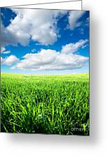 The Beautiful Greens Landscape Greeting Card by Boon Mee