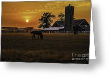 The Beauty Of A Rural Sunset Greeting Card by Mary Carol Story