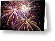 The beauty of fireworks Greeting Card by Garry Gay