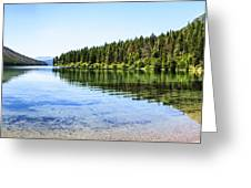 The Best Beach In Glacier National Park Panorama Greeting Card by Scotts Scapes
