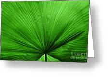 The Big Green Leaf Greeting Card by Natalie Kinnear