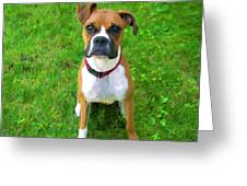The Boxer Greeting Card by Donna Doherty