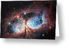 The Brush Strokes Of Star Birth Greeting Card by Lucy West