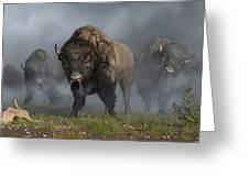 The Buffalo Vanguard Greeting Card by Daniel Eskridge