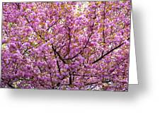 The Color Purple 2 Greeting Card by Paul W Faust -  Impressions of Light