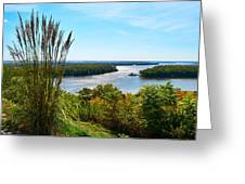 The Confluence  Greeting Card by Julie Dant
