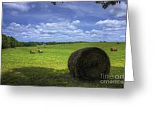 The Country House Hayfield Greeting Card by Reid Callaway