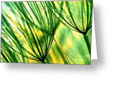 The Dandelion Greeting Card by Odon Czintos