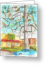 The Dry Tree In The Yellow House - Hollywood - California Greeting Card by Carlos G Groppa