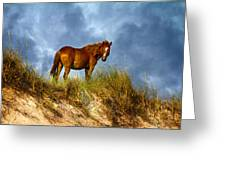 The Dune King Greeting Card by Betsy Knapp