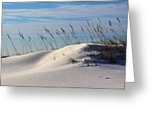 The Dunes Of Destin Greeting Card by JC Findley