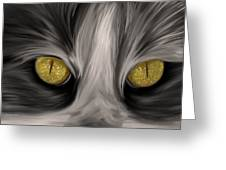 The Eyes Have It Greeting Card by Angela A Stanton
