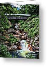 The Flume Greeting Card by Heather Applegate