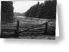 The Gate In Black And White Greeting Card by Lawrence Christopher