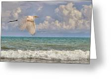 The Great Egret And The Ocean Greeting Card by Kathy Baccari