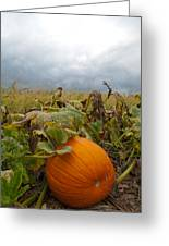 The Great Pumpkin Greeting Card by Wayne King