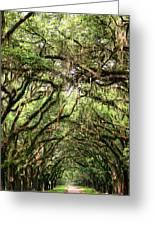The Green Mile Savannah Ga Greeting Card by William Dey