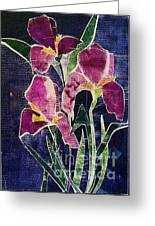 The Iris Melody Greeting Card by Sherry Harradence