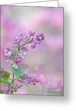 The Lilac Greeting Card by Kay Pickens