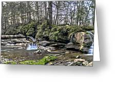 The Living Waters Greeting Card by Donnie Smith