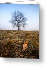 The Lone Oak Greeting Card by Davorin Mance
