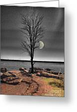 The Lonely Tree Greeting Card by Betty LaRue