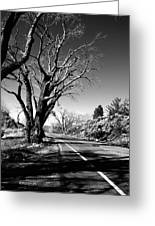 The Long Way Around Greeting Card by Glenn McCarthy Art and Photography