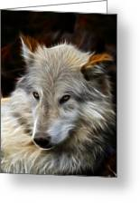 The Look Greeting Card by Steve McKinzie