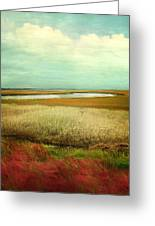The Low Country Greeting Card by Amy Tyler