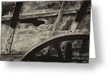The Marks Of Age Greeting Card by Paul W Faust -  Impressions of Light