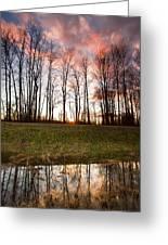 The Marsh Greeting Card by Eti Reid