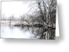The Marsh Greeting Card by Julie Palencia