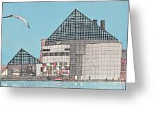 The National Aquarium Greeting Card by Calvert Koerber