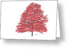 The Oak Tree Greeting Card by David Simons