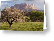 The Old Apple Tree In My Backyard In Rockville Utah Greeting Card by Robert Ford