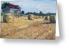 The Old Barns In Georgetown On Greeting Card by Ylli Haruni