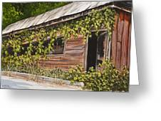 The Old General Store Greeting Card by Darice Machel McGuire